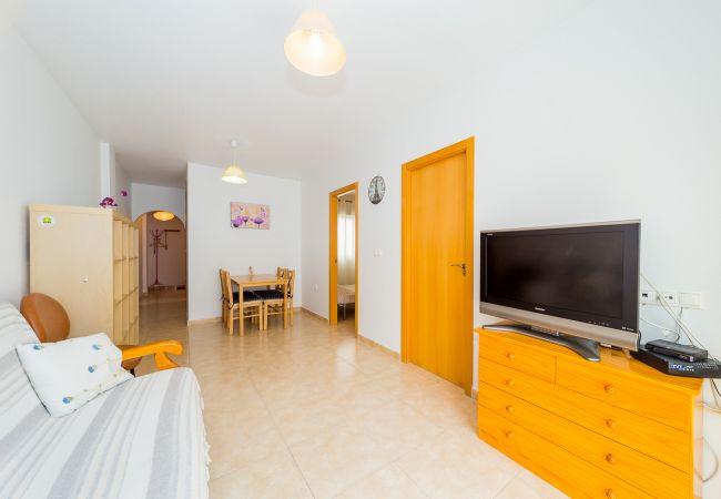 Apartamento en Torrevieja - ID133