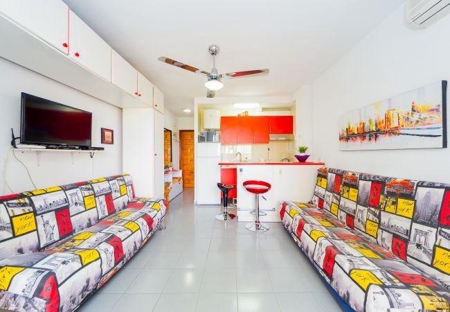 Квартира-студия на Torrevieja - ID74