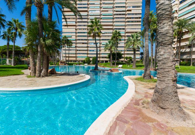 Апартаменты на El Campello - Fidalsa Baydream